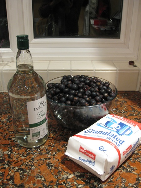 Ingredients for Sloe Gin