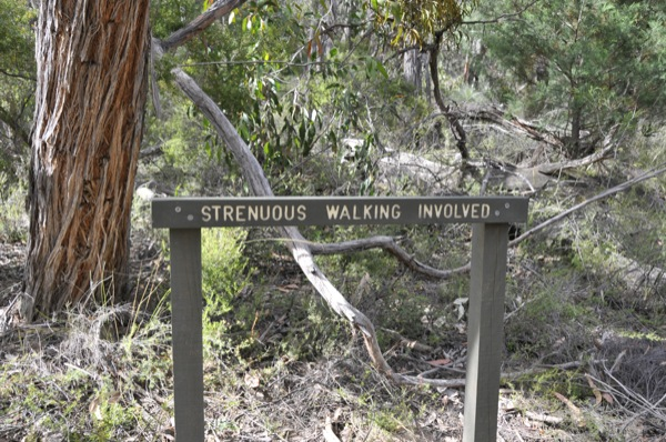 "A ""strenuous"" walk..."