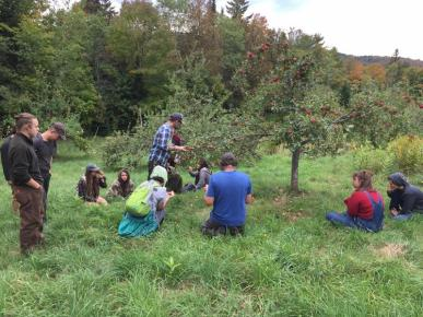Students sit in a local orchard at the end of the summer, learning from orchardist Josh Karp, of Cate Hill Orchard
