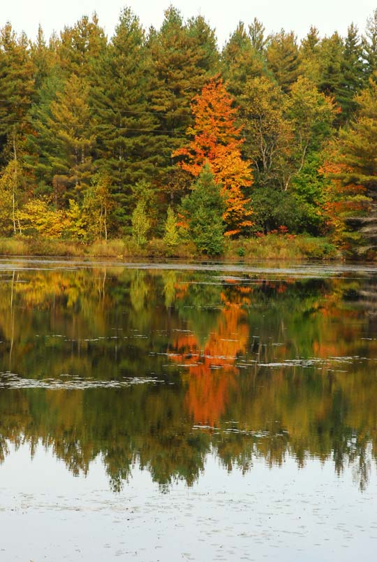 Read more about the article Sterling Ridge Resort | Best Places to Visit for Fall Foliage