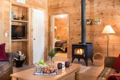 spacious living space in 2 bedroom cabin with fire in wood stove
