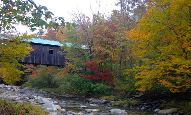 Six Vermont Foliage Ideas