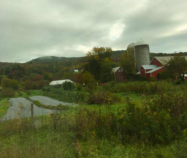 Fall Romance Vermont