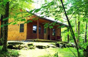 One Bedroom log cabin in lush green foliage | Sterling Ridge Resort