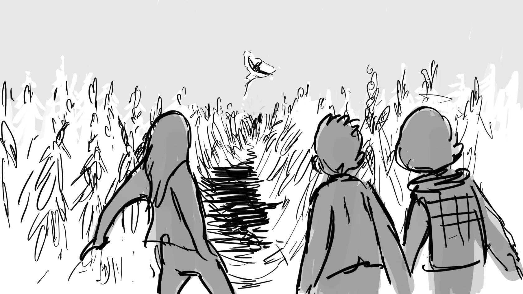 cornfield  aoipzo