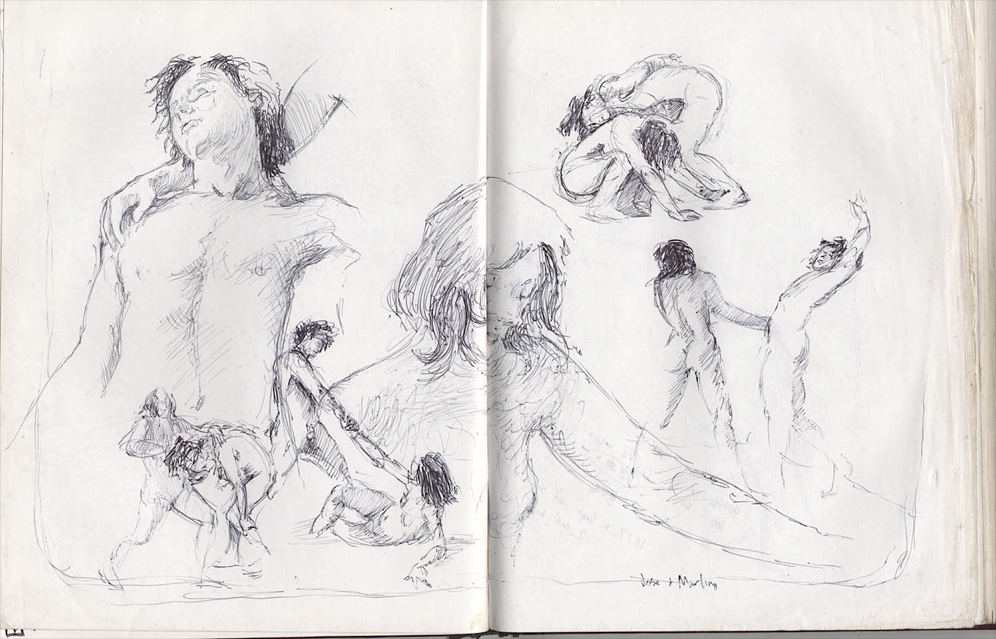 figure studies