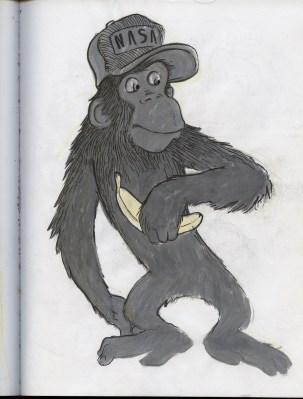chimp her design