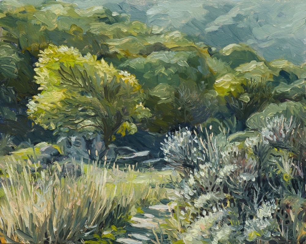 alla prima plein air oil painting by Sterling Sheehy