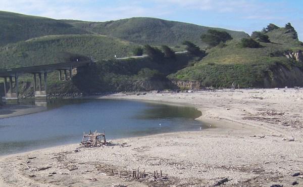 San Gregorio Creek Watermaster
