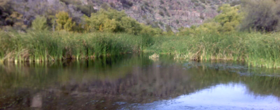 San Carlos River