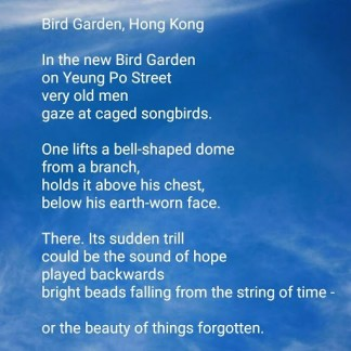 Bird Garden, Hong Kong