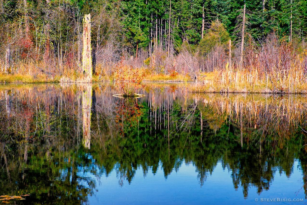 Bull Frog Pond, Kittitas County, Washington, 2013