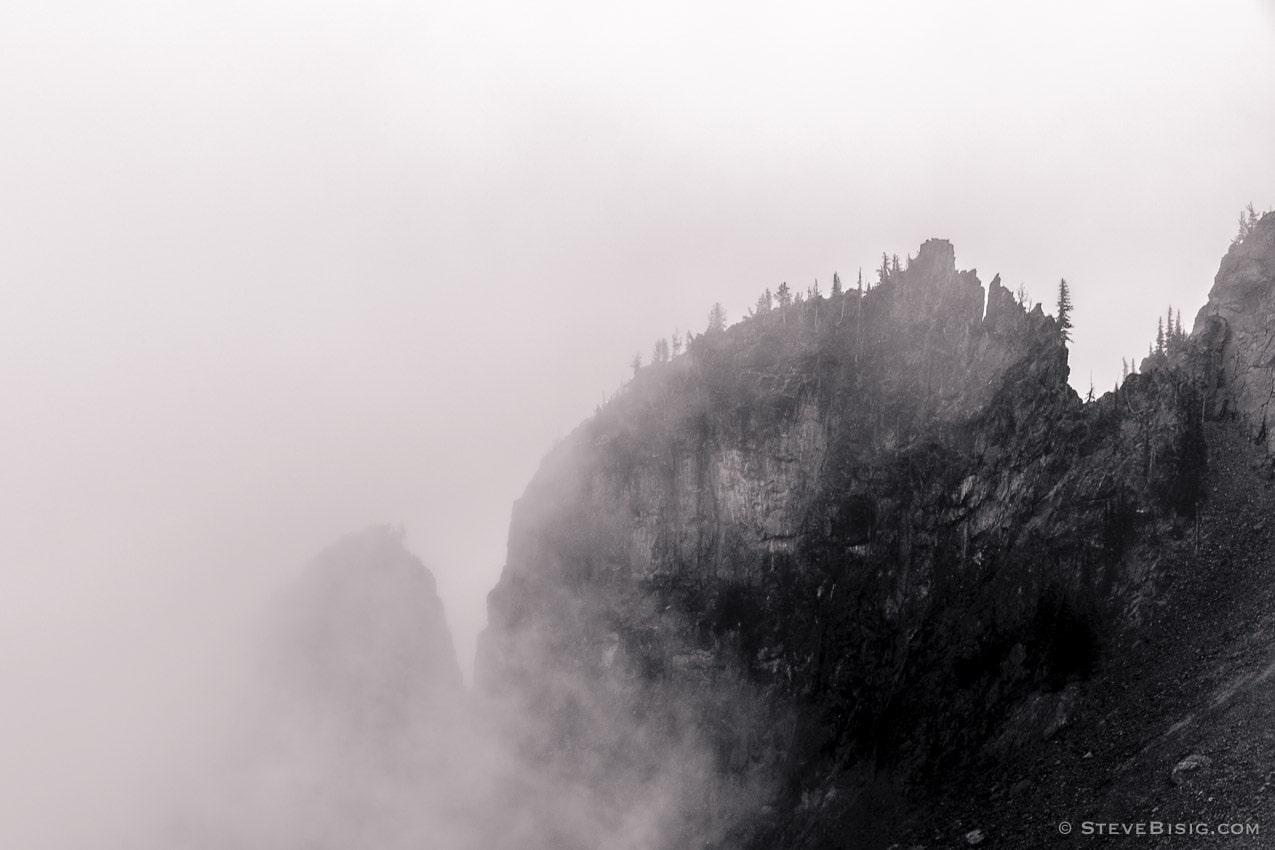 Foggy Alpine Landscapes No. 1, Mount Rainier National Park, Washington, 2014
