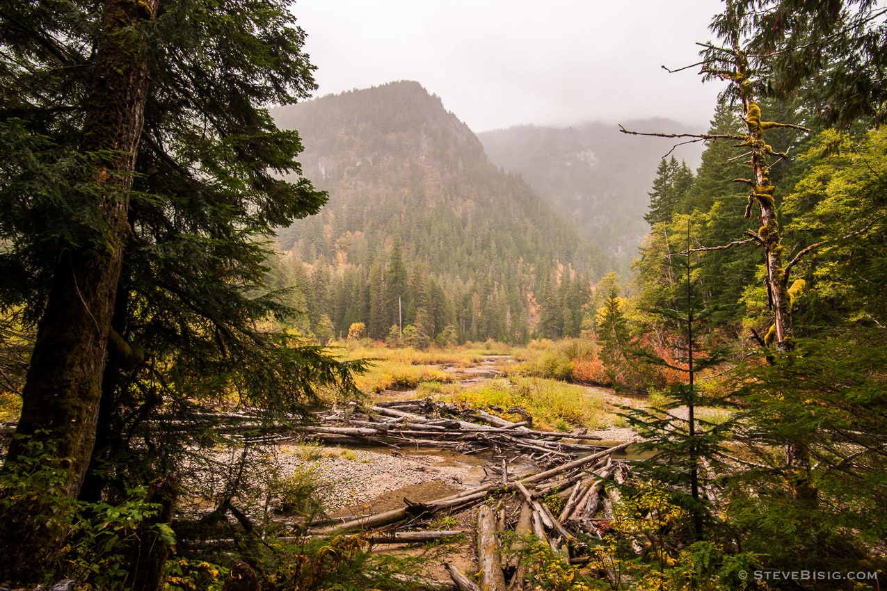 Photography Project: Autumn Colors, Mountain Loop Highway, Washington, 2015