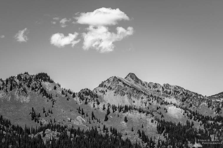 A black and white landscape photograph of the Sourdough Mountains Range located in the Sunrise area of Mount Rainier National Park, Washington.
