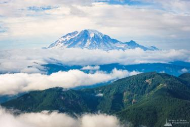 A photograph of Mount Rainier as viewed from the Burley Mountain Lookout in the Gifford Pinchot National Forest, Lewis County, Washington.