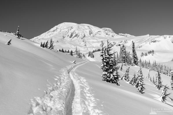 A black and white landscape photograph of a snow-covered trail captured on a sunny winter day in the Paradise area of Mount Rainier National Park, Washington.