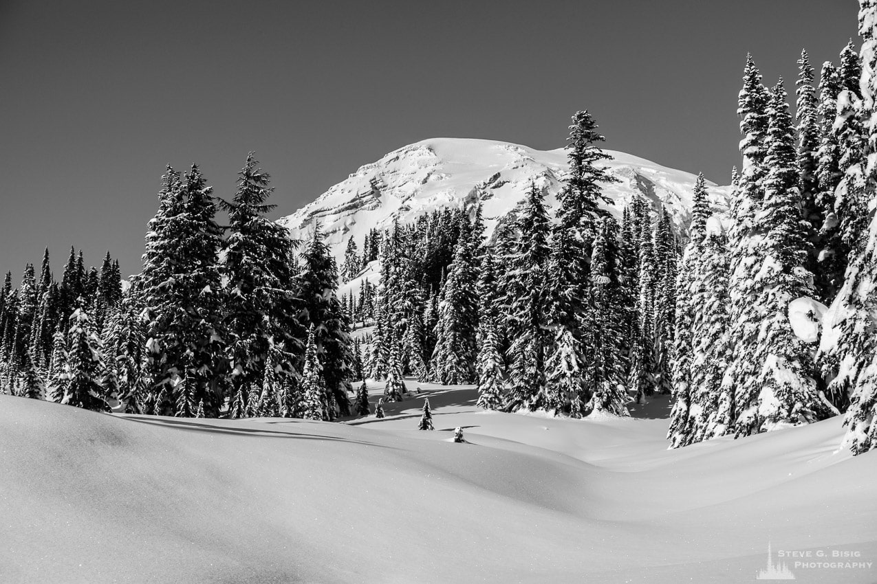 Winter Meadows, Paradise, Mount Rainier, Washington, 2017