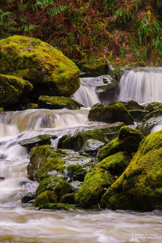 A landscape photograph of a small waterfall during a Winter rain along O'Toole Creek in Skagit County, Washington.