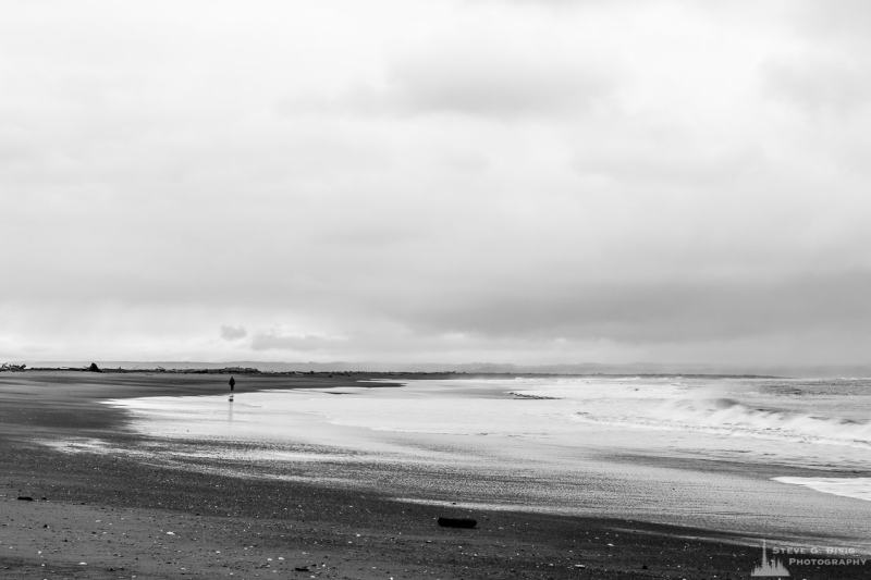 A black and white landscape photograph of the beach along Protection Island at Ocean Shores, Washington.