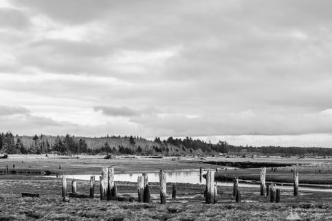 A black and white landscape photograph of Campbell Slough at low tide on a winter afternoon along Burrows Road in rural Grays Harbor County, Washington.