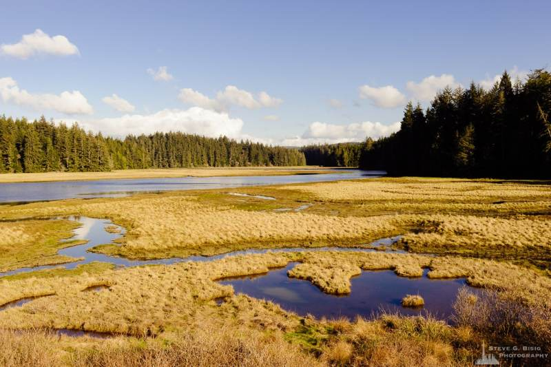 A landscape photograph of an estuary at the Niawiakum River Natural Area Preserve along Willapa Bay in Pacific County, Washington.