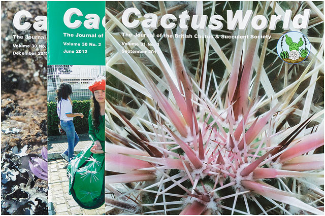 Cactus World Magazine Covers