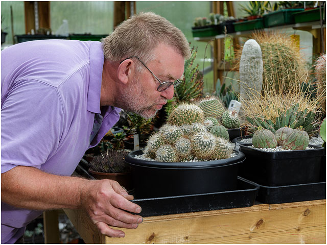 Portrait Of Man Kissing Cactus In Greenhouse