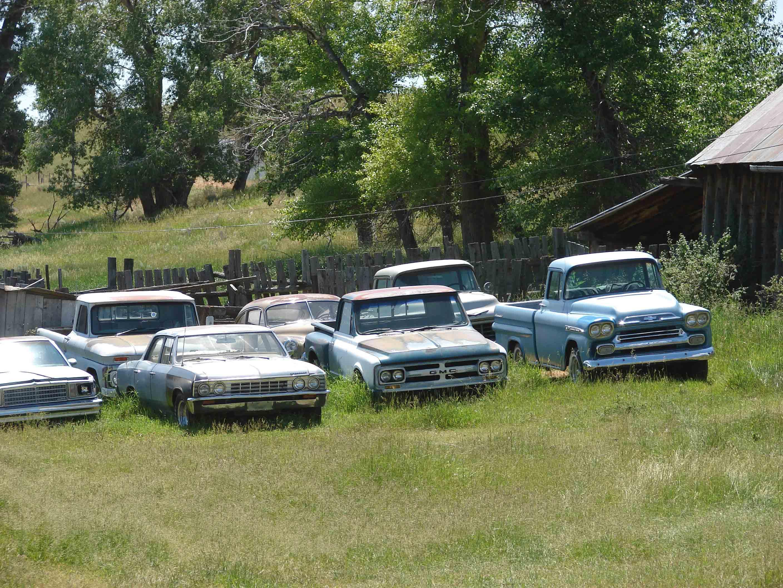 Old Trucks & Old Friends