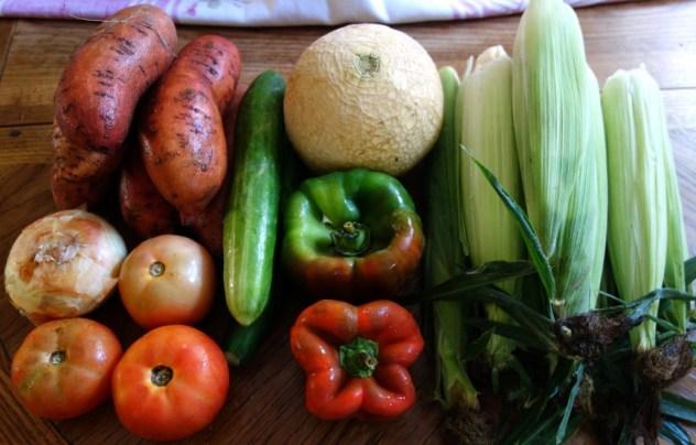 Homestead Creamery Week 15 Vegetable Delivery