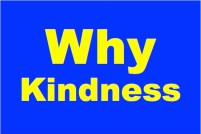 Why Kindness, Image made by Steve Kaye, (c) Steve Kaye