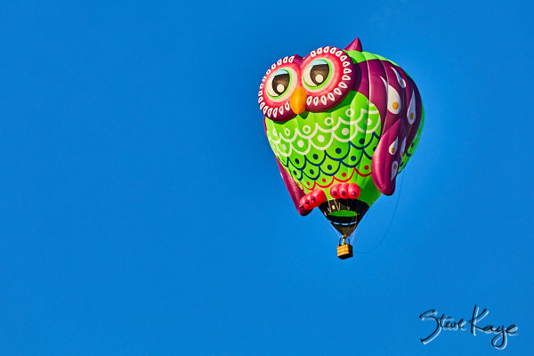 Whooz'up, Owner: John Ware, Salt Lake City, UT, (c) Photo by Steve Kaye taken at the 2017 Albuquerque Balloon Fiesta, in blog post: Strange Birds Take Flight