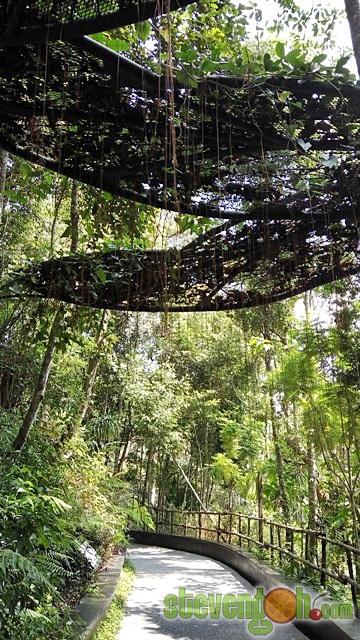 the_habitat_penang_hill42