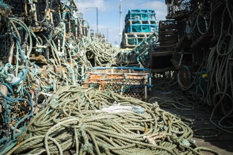 Fishing Nets #1
