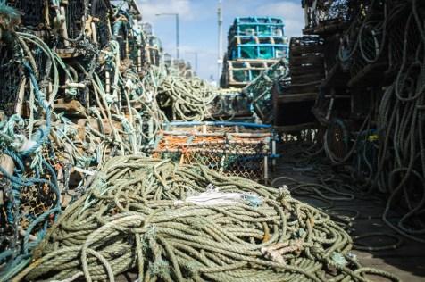 Fishing Nets #1
