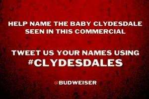 Budweiser Social Ad