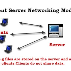 Office Lan Network Diagram Wiring For 1999 Dodge Ram 2500 Basic Networking Concepts Beginners Guide Below Client Server