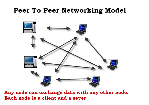 office lan network diagram ford escape power steering basic networking concepts beginners guide peer