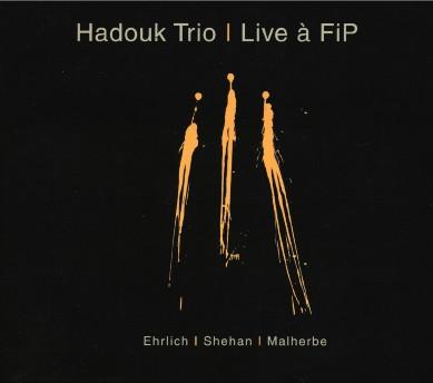 Hadouk Trio - Live à FIP