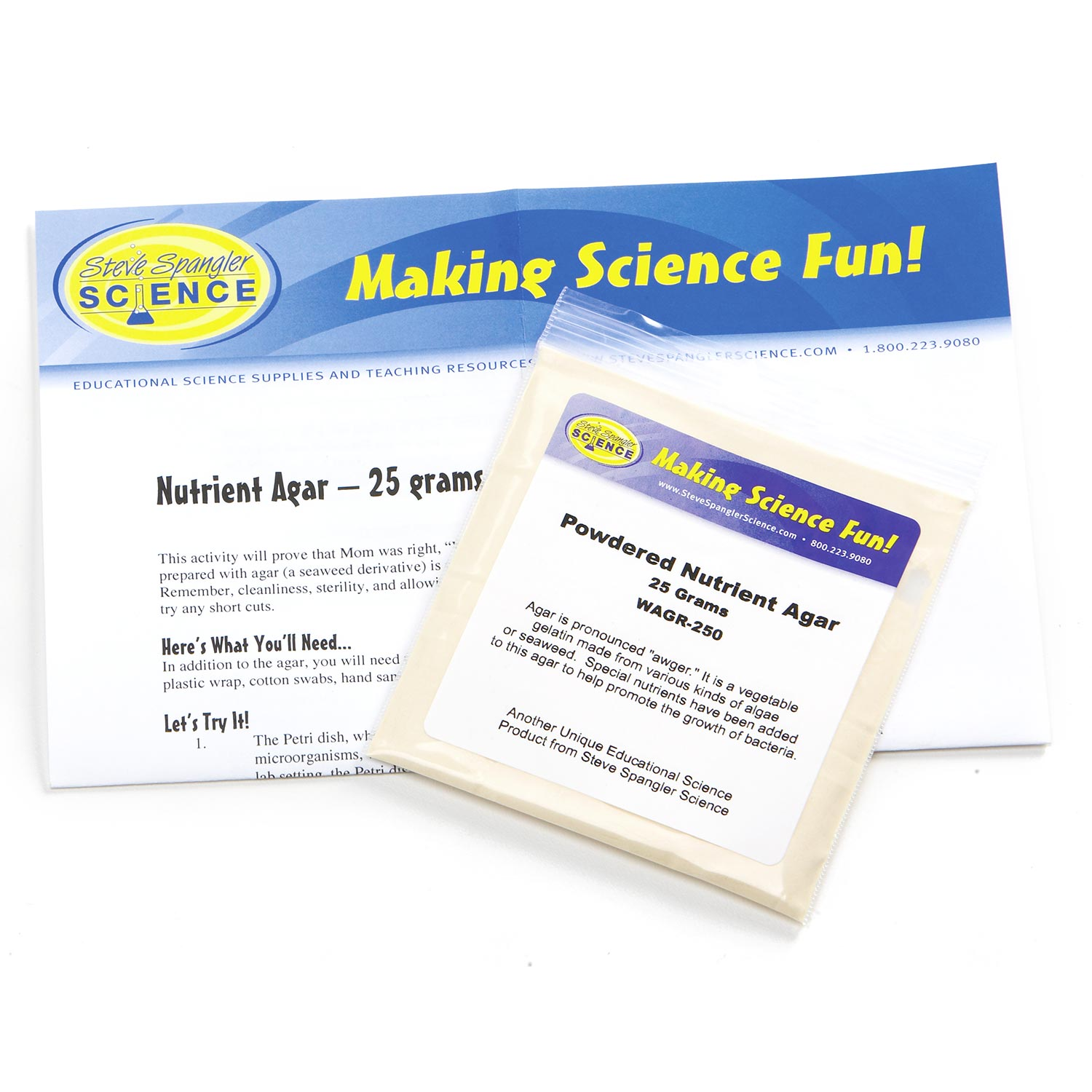 Borax Glue Worksheet