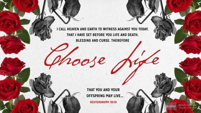artwork credit: biblia.com