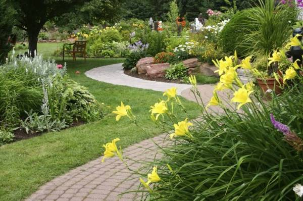 perennial garden design ideas