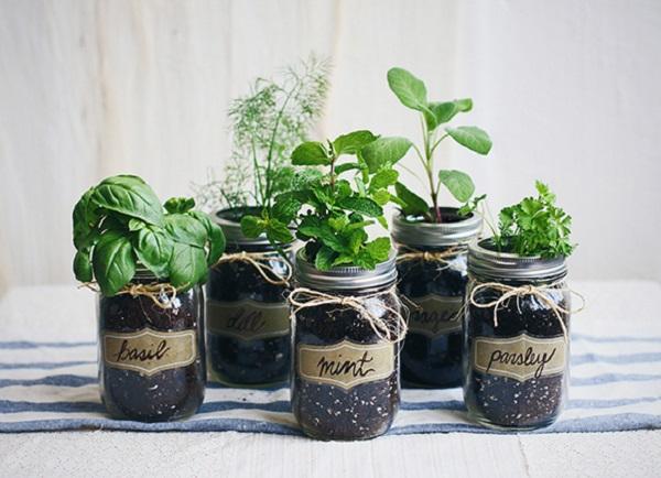 18 Creative And Easy DIY Indoor Herb Garden Ideas Interior