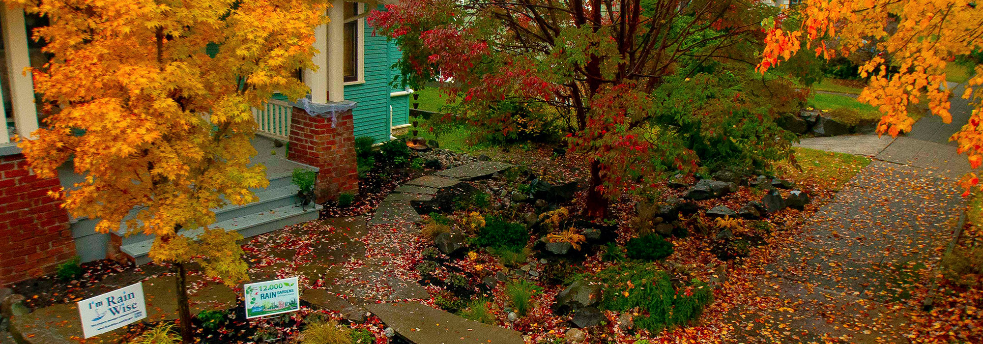 12,000 Rain Gardens | Stewardship Partners