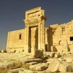Stewart Innes Palmyra Syria