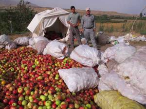 vendeurs-de-pomme-pres-dahar-azerbaidjan-diran