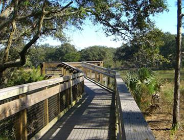 Guana Tolomato Matanzas Reserve GTM boardwalk