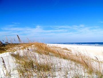 Anastasia State Park beach and dunes