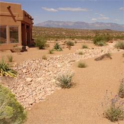 desert landscaping is low