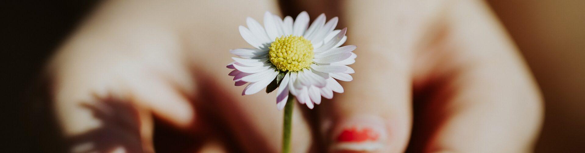 holding flower